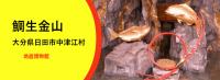 鯛生金山のホームページ